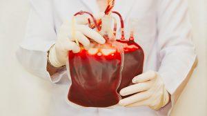 Profissional segurando bolsas de sangue